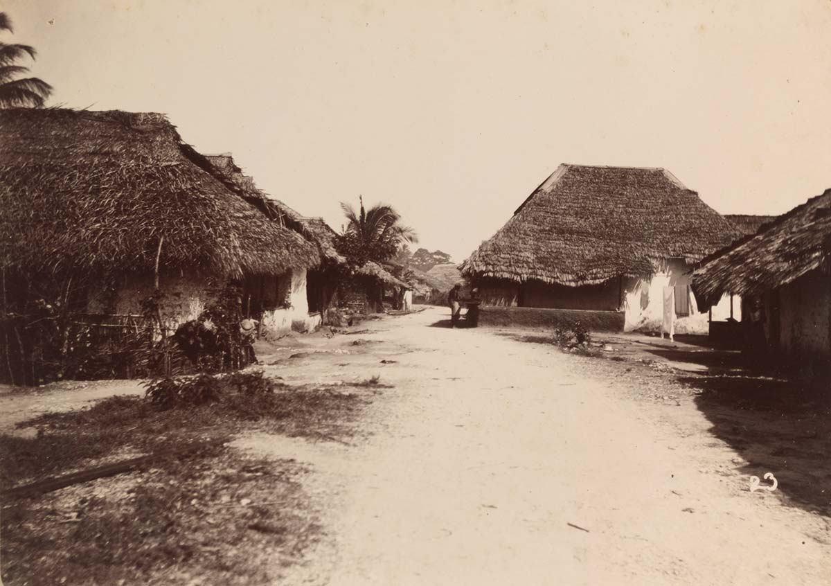 N'Gambo, Zanzibar