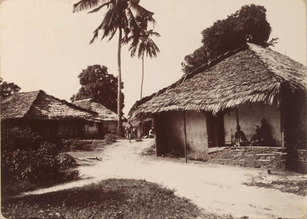 Houses in Mchangani, N'gambo, Zanzibar